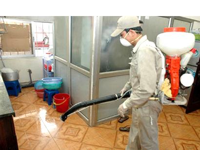 Hình ảnh: Phun, diệt kiến, diệt gián, diệt muỗi số 1