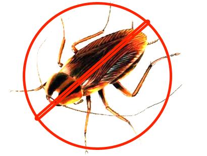 Hình ảnh: Phun, diệt kiến, diệt gián, diệt muỗi số 2